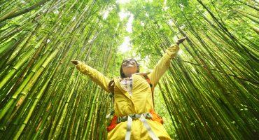 5 bæredygtige rejsetips