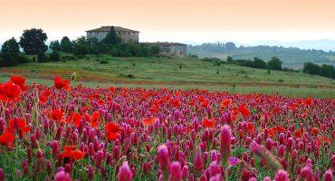 6 af de smukkeste haver i Europa byder det blomstrende forår velkomment!